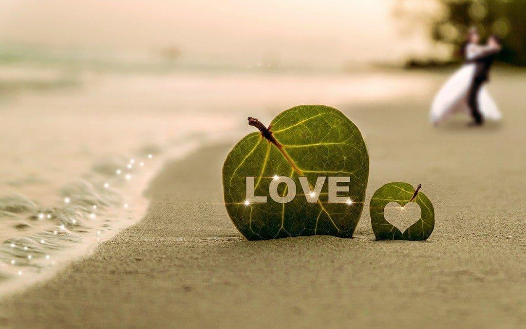 Groom Attire Ideas for a Beach Wedding